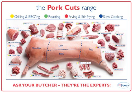 small resolution of pork cuts us