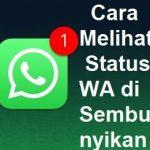 Melihat Status Wa Private