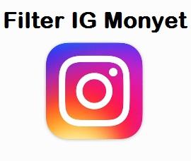 filter instagram monyet