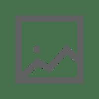 Artistic Save Tour Kayak Vest - Red