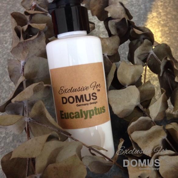 domus aroma oil eucaliptus