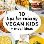 10 Tips For Raising Vegan Kids Meal Ideas Nora Cooks