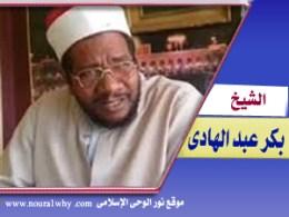 الشيخ بكر عبد الهادى