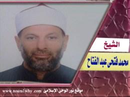 الشيخ محمد فتحى عبد الفتاح