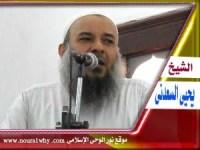 الشيخ يحيى عبد الشكور السعدنى