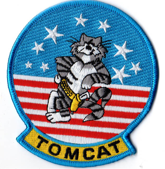 F14 Tomcat Patch  North Bay Listings