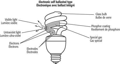 Fluorescent Light Bulb Diagram. Fluorescent Light Bulbs