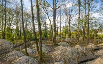 Garten des Friedens in Thiepval, © Yann Monel