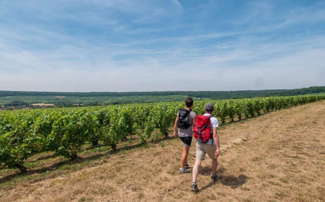 Weinwandern in Trélou-sur-Mer, © Sylvain Premont Agence Aisne Tourisme