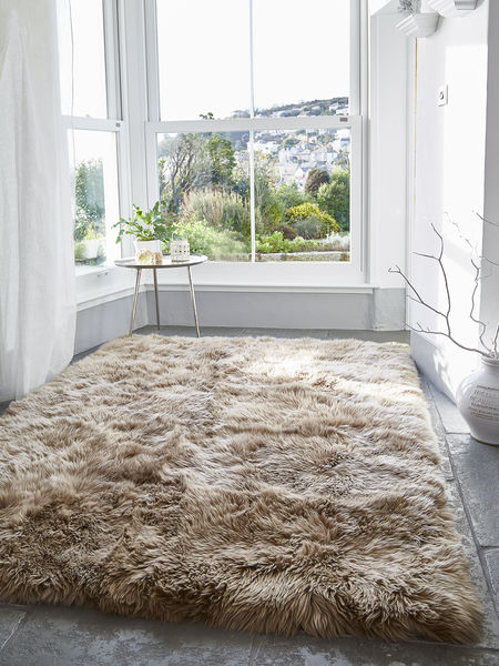 Cool Rugs