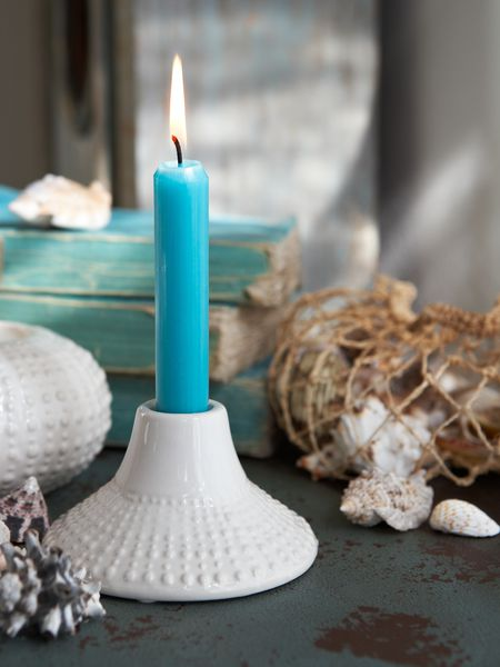 Sea Urchin Candle Holder