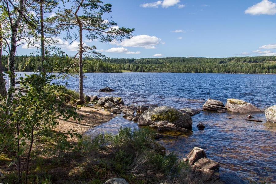 schweden 2015 glaskogen nationalpark. Black Bedroom Furniture Sets. Home Design Ideas