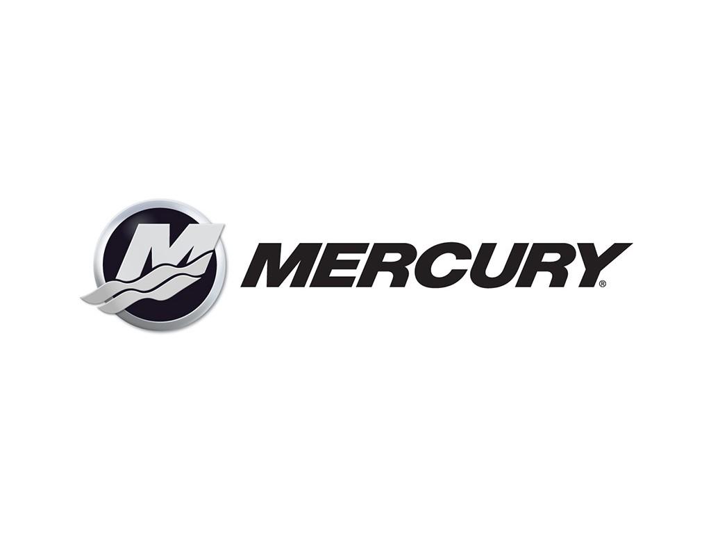 Moteur hors bord 150 cv 4 temps Mercury