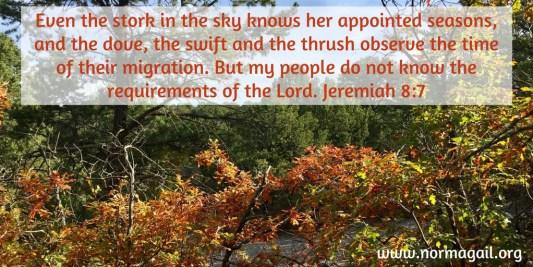 Autumn Transformation scripture