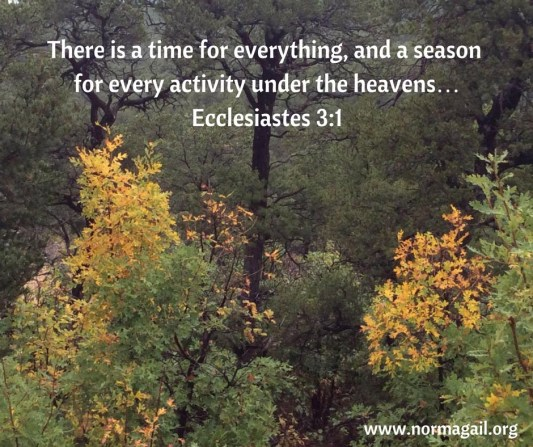 Season's Change scripture