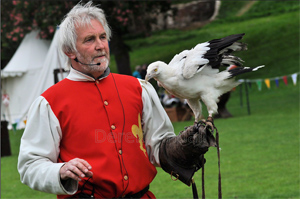 Picture of Derek Tindall holding a bird of prey