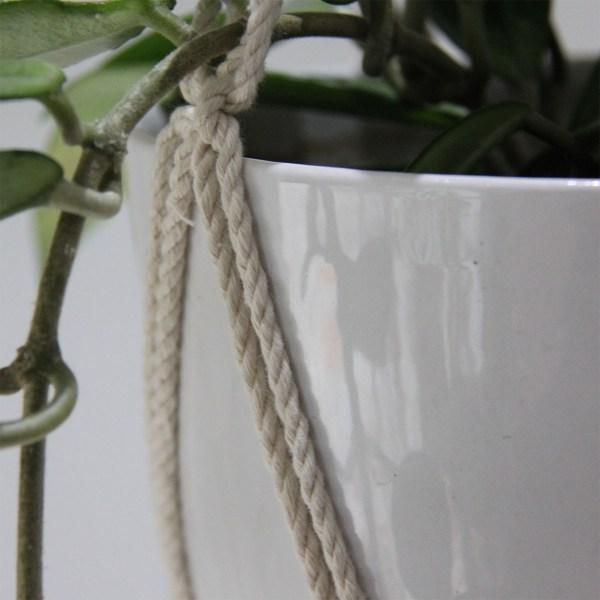 nærbillede plantehænger