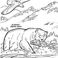 Wildlife Coloring Book Widescreen Pages Alaska Animals Of Iphone High Resolution