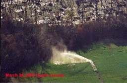 hog spraying field