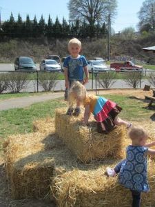 Changes on the outdoor learning environment (playground) included low-cost additions, such as hay bales, logs and a gravel path.