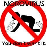 norovirus-2-1