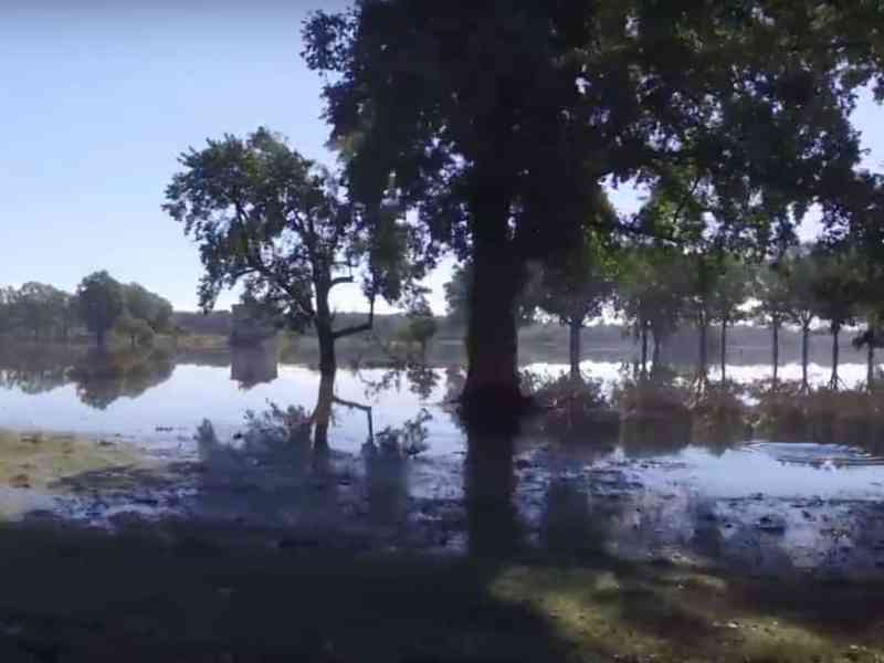 Flooded fields near Kinston, where the Neuse River is predicted to crest sometime Friday.