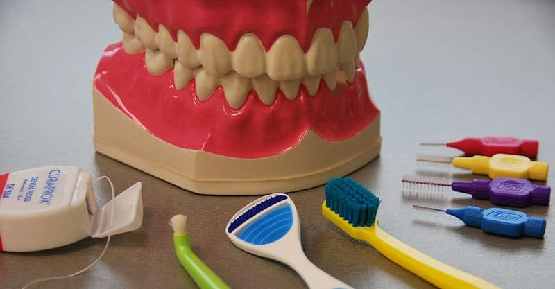 shows a demonstration mouth and an array of brushes for performing oral health care.