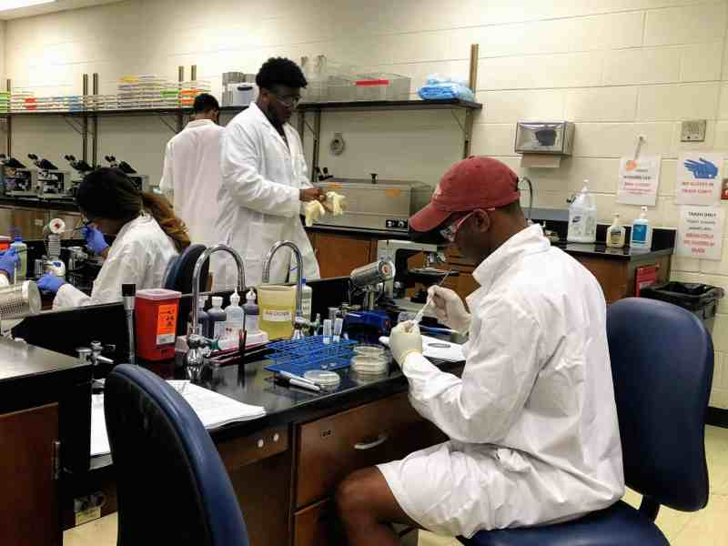 a young man in a baseball cap and lab coat sits at a lab table with microbiology instruments
