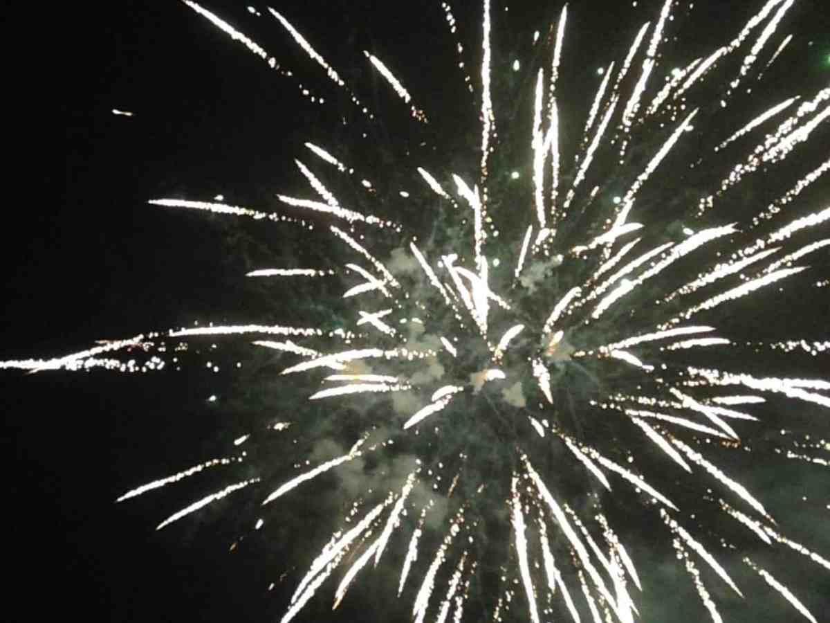 shows white fireworks against a dark sky. 2019, 2020