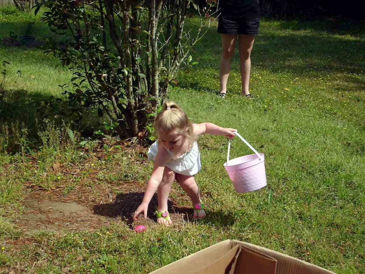 little girl carrying a pink pail leans over to pluck a pink easter egg from the grass. Because of Coronavirus, egg hunts have gone virtual this year.