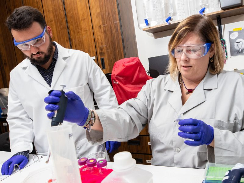 Dr. Jamie DeWitt, right, and Samuel Vance, a biomedical science master's program student, conduct research into the health effects of PFAS in DeWitt's lab at East Carolina University's Brody School of Medicine. Photo credit: East Carolina University.