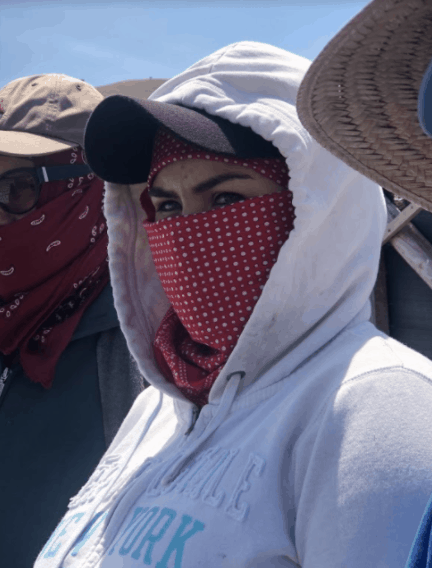 We see a woman with her face covered by a red handkerchief alongside other farmworker women.