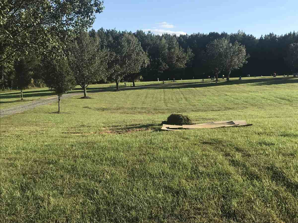 We see a green field lined with trees, and a plot in the middle with cardboard lying atop it.