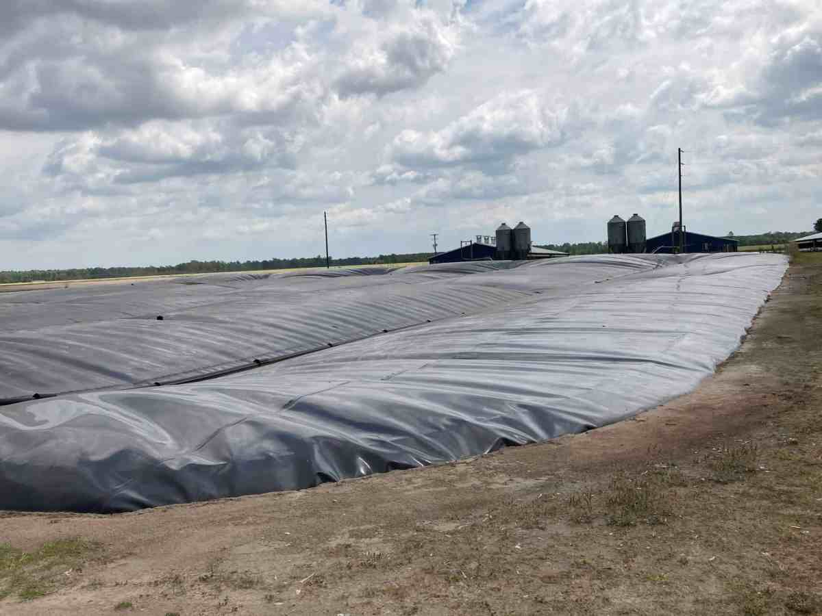 Photo shows a large, flat field with some structures in the distance. In the foreground, a large plastic looking tarp on the ground