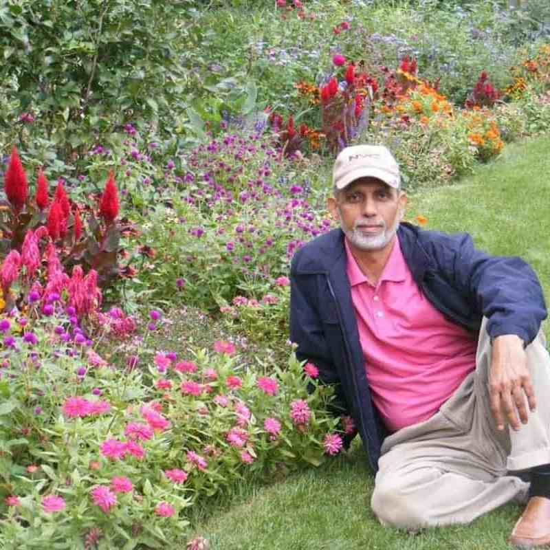 Muhammad Siddiqui sitting in a garden with lot of colorful flowers to the left of him.