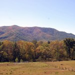 North Carolina Mountains Fall Foliage 2016