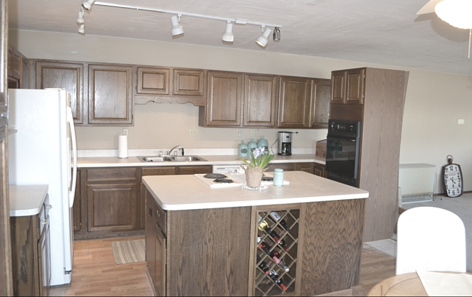 13 kitchen cabinets before
