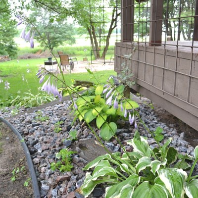 Landscaping Tour: Summer 2016