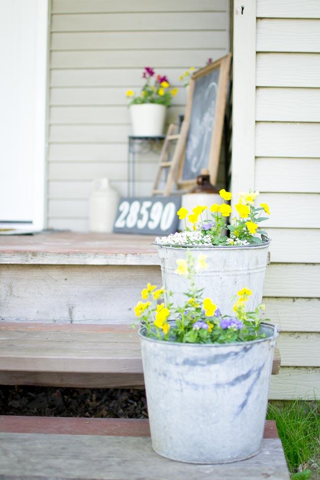 galvanized buckets with summer flowers