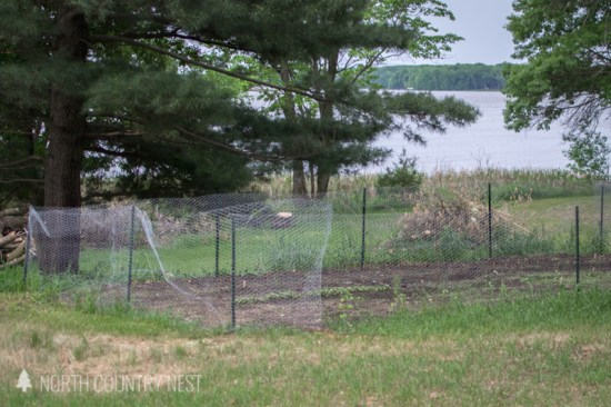 chicken wire fence with metal post for vegetable garden