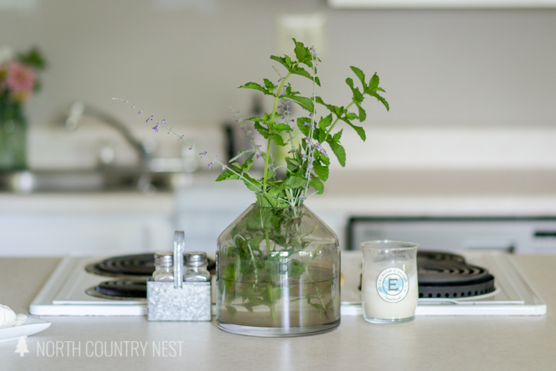 glass vase with fresh mint and fresh lavender