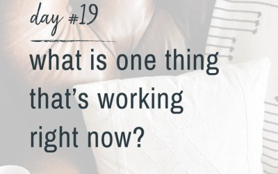 Mindfulness Challenge Day 19: What's One Thing That's Working Right Now?