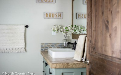 Decorating the Guest Bathroom for Spring