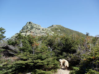 The alpine zone of Little Haystack Mountain.