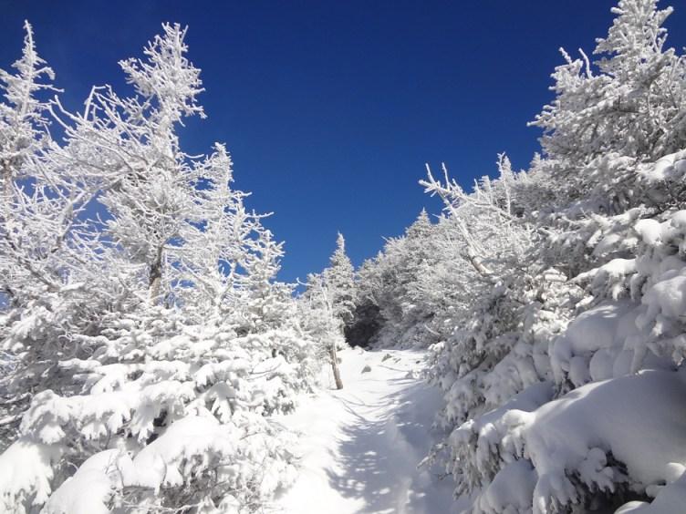 Frozen Old Bridle Path Trail on Mt. Lafayette