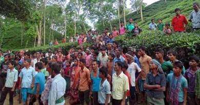 Assam- Tea garden owner fires on tea workers, 8 injured
