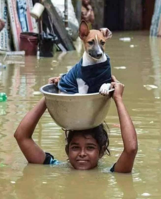 Assam: Flood death toll rises to four