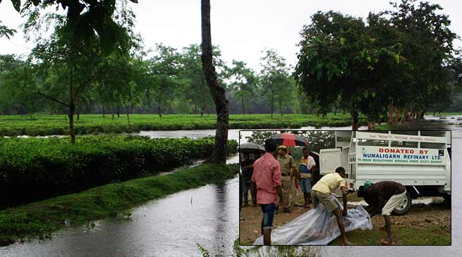 Assam: Tea garden watchman dead after flash flood hit Bokakhat