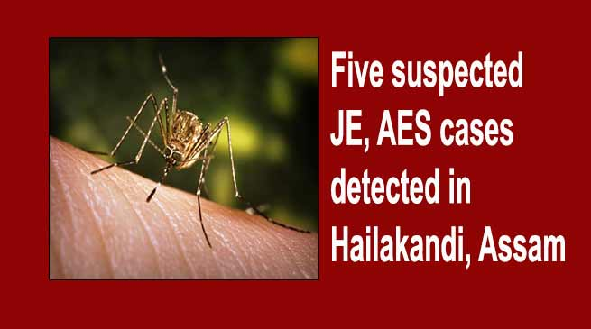 Assam:  Five suspected JE, AES cases detected in Hailakandi