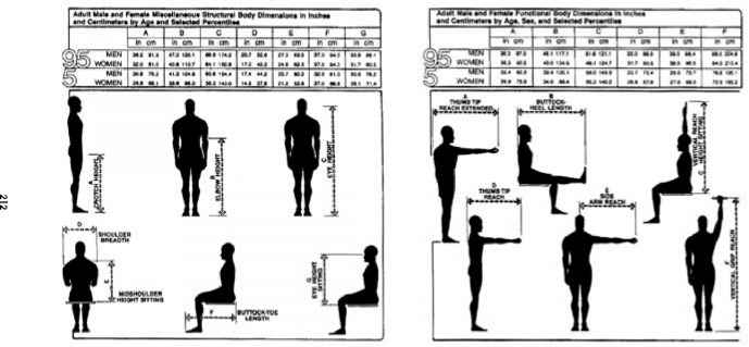 Guidelines For Using Anthropometric Data In Product Design